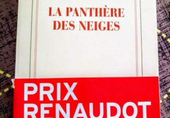 """""""La panthère des neiges"""" de Sylvain Tesson"""